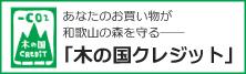 banner_kinoeco